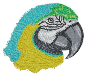 Macaw - Custom Online Embroidery Design
