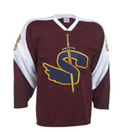 Teamwork 1517 Birdseye Airmesh Hockey Jerseys - Youth