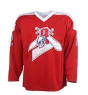 Teamwork 1519 House League Uniform Hockey Jersey - Youth