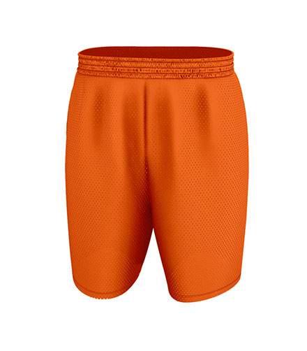 Alleson Basketball EXtreme Mesh Short - Adult Mens