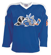 Teamwork 1524 Roller Mesh Hockey Jersey - Adult Mens