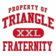 Triangle-599 Full-Color Shirt Designs