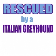 ITALIAN GREYHOUND - DOG-E-DESIGNS