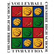 Volleyball-201 (Full Color)