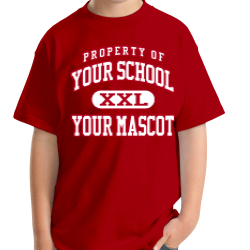 Van Arsdale Elementary School Custom Youth T-shirt