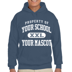 Mountain Vista Community School Custom Hooded Sweatshirt