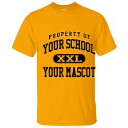 Des Moines Municipal School Custom Adult T-shirt