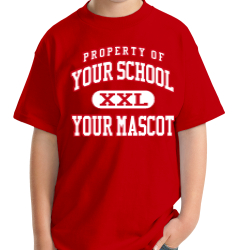 Denver City Junior High School Custom Youth T-shirt
