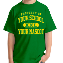 Emerson Elementary School Custom Youth T-shirt
