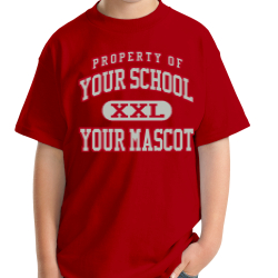 Illinois Valley Central High School Custom Youth T-shirt