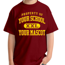 Alexandria Intermediate School Custom Youth T-shirt