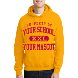 Alexandria Intermediate School Custom Hooded Sweatshirt