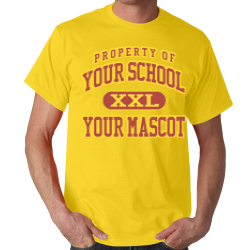 Alexandria Intermediate School Custom Adult T-shirt