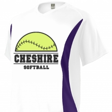 Custom Softball Jersey Design #17